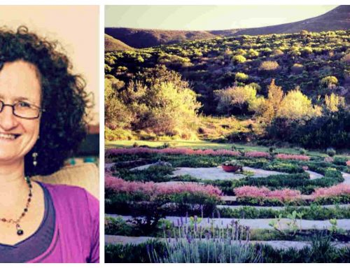 Bodhi Khaya Spring Retreat: Finding Courage for New Beginnings with Sue Cooper